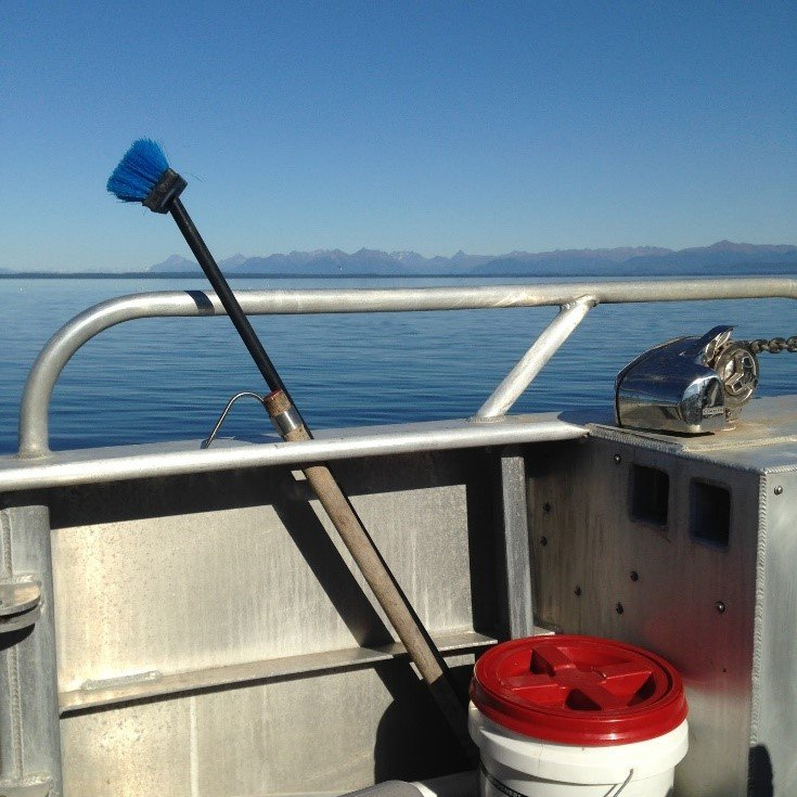 Alaska_Sea2